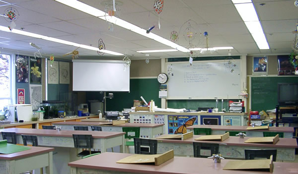 Science Classroom Decorations High School ~ High school rp drama cligues love need peeps